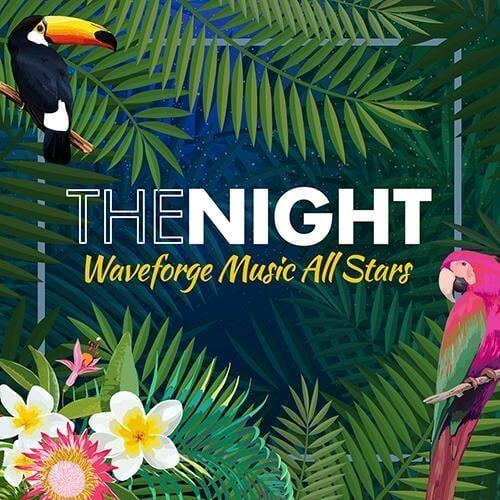 The Night by Waveforge Music All Stars